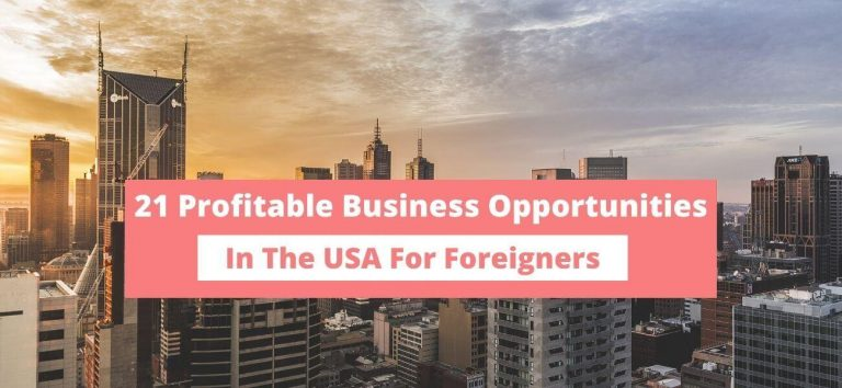 business opportunities in the USA for foreigners.jpg